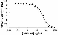 TIMP-1_Mouse_Recombinant_BA_011414.jpg