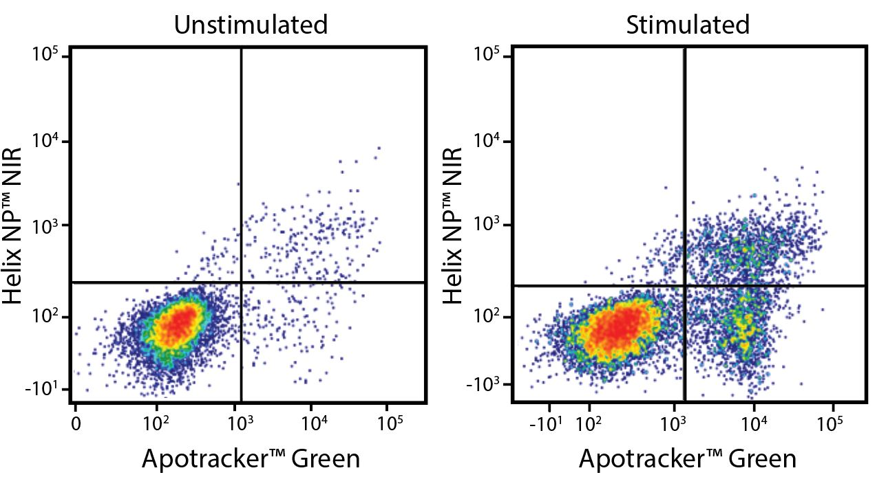 Flow cytometry data with Apotracker™ Green (Apo-15)