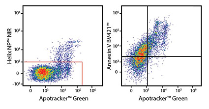 Flow data with Apotracker™ Green (Apo-15)