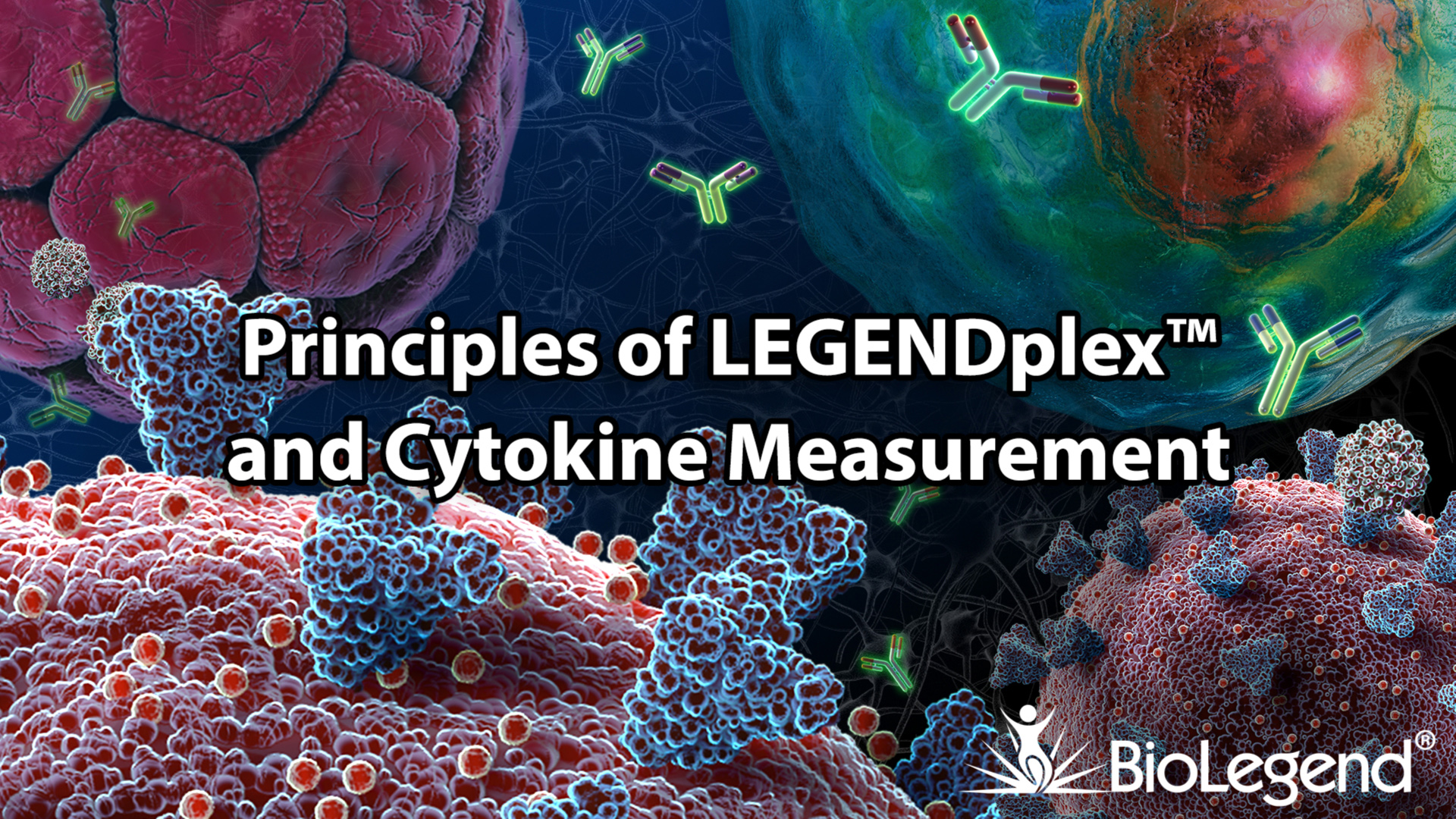 Principles of LEGENDplex and Cytokine Measurement