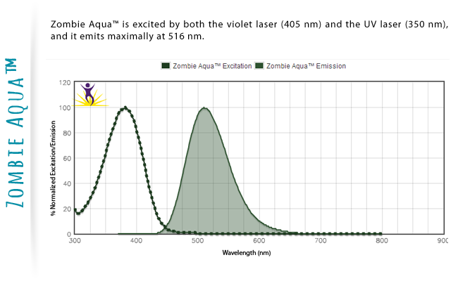 Zombie Aqua is excited by both the violet laser (405nm) and the UV laser (350 nm), and it emits maximally at 516 nm