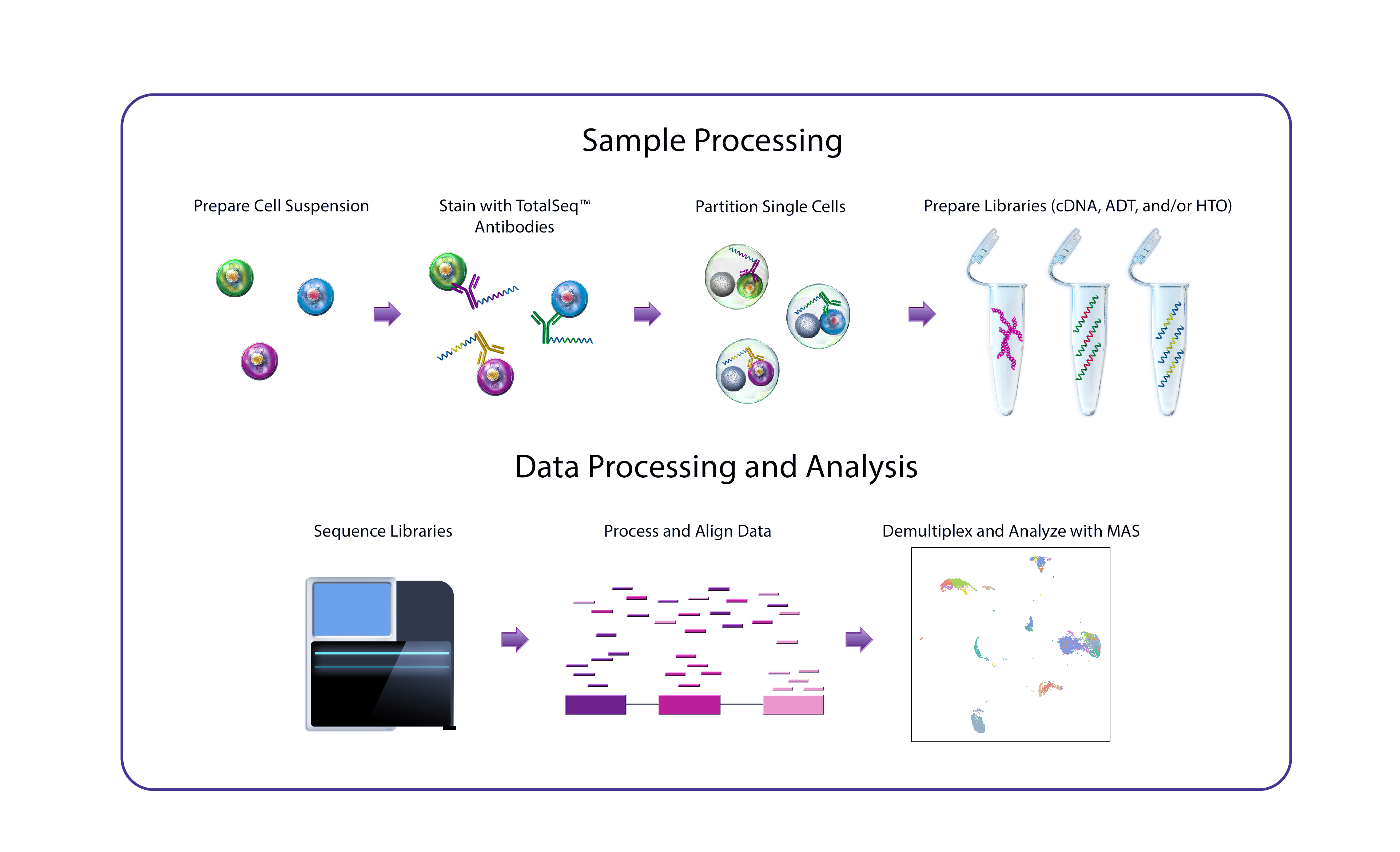 Single-Cell Multiomics Workflow Chart